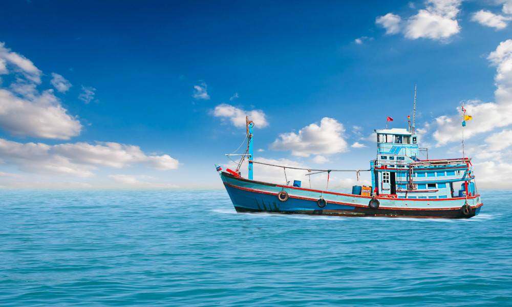 World Fisheries Day – Celebrate Victoria's sustainable fishing industry!