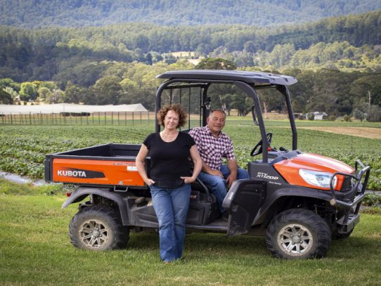 Strawberry grower recognised for on-farm biosecurity efforts