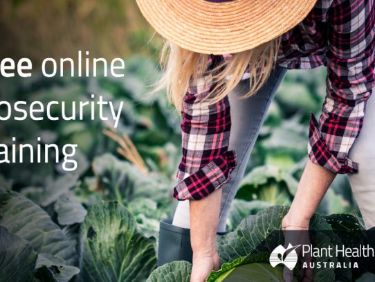 PHA launches free plant biosecurity surveillance training